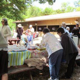 picnic 2016 (5)